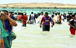 صيد سمك الحريد .. تظاهرة سنوية لدى أهالي فرسان